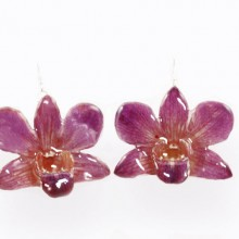 Dendrobium Large Purple Pink Earrings