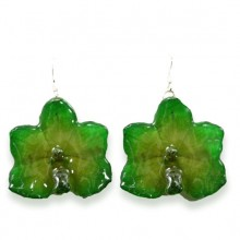 Green Ascocentrum Orchid Earrings